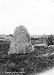 Deux menhirs à Tréfoux -