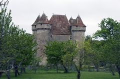 Château - English:  Castle of Sarzay, seen from the road to Santiago at the center of the village.
