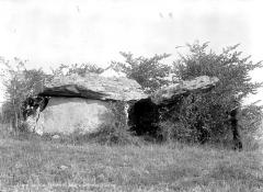 Dolmen dit Les Palets-de-Gargantua -