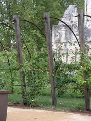 Ancien prieuré de Saint-Cosme - Deutsch: Elemente des 2010 renovierten Gartens im Innenhof der Prieuré