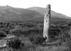 Menhir de Vaccil-Vecchio -