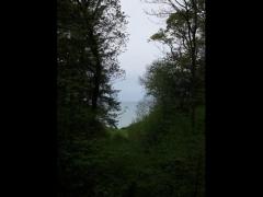 Domaine du Bois des Moutiers - English:   The park overlooks the seaside.