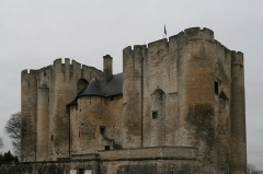 Château de Niort -  Donjon de Niort