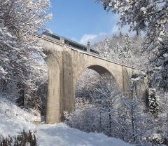 Viaduc - Čeština: Jedoucí vlak na mostě (Morez, Jura, Francie)
