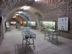 Château - Musée Baron-Martin: cave voûtées classées et archéologie