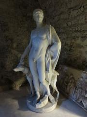 Château - Musée archéologie de Gray