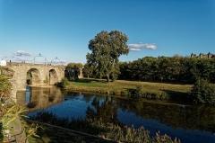 Pont-Vieux - English: Carcassonne - Quai de Bellevue - View NE on Pont Vieux / Old Bridge