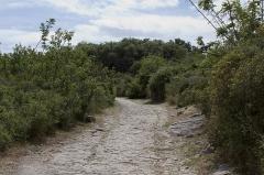 Via Domitia (également sur communes de Redessan et Jonquières-Saint-Vincent, dans le Gard, et Castelnau-le-Lez, dans l'Hérault) -  The paved street of the Via domitia is the main street through the oppidum..