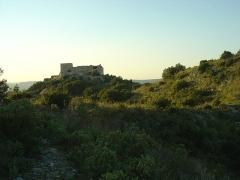 Ruines du Castellas - Français:   Le Castellas (234m) de Saint-Victor la Coste dans le Gard (30). Photo prise depuis un sentier peu emprunté.