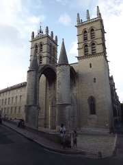 Cathédrale Saint-Pierre - La cathédrale Saint-Pierre de Montpellier est une cathédrale catholique. Située dans l'écusson, le centre de la vieille ville, c'est le plus important monument de style gothique de la ville de Montpellier et la plus grande église du Languedoc-Roussillon.