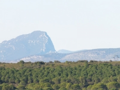 Oppidum d'Ambrussum -  Ambrussum is a Roman archaeological site in Villetelle, near Lunel, Hérault, the Via Domitia which led over the Pont Ambroix, ran at the foot of the settlement. From the highest point of 58m we can see  Pic Saint-Loup