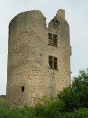 Ruines du château - English:   castle of St-Germain-de-Confolens, Charente, SW France