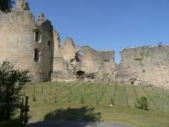 Ruines du château - Français:   rempart sud, petite vigne extérieure; Château de St-Germain-de-Confolens, Charente, France