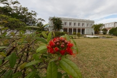 Villa Deramond -