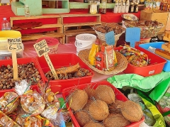 Marché central couvert - English: Coconut on sale at the St. Antoine market in guadeloupe
