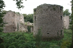 Château du Ranroët (ruines) - This image was uploaded as part of Wiki Loves Monuments 2011.