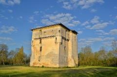 Donjon de Moricq - English: Moricq