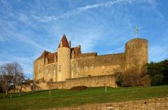 Motte féodale - Le château de Châteauneuf (Côte-d'Or)