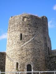 Ruines du château -  Saint-Sauveur-le-Vicomte (Normandie, France). La Tour du Nord du château.