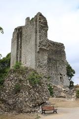 Château -  Vestiges du château de Domfront, détruit sur ordre de Sully en 1608.