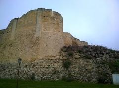 Château fort, actuellement collège -  Calvados Falaise Le Chateau De Guillaume Tour Entree 06062016