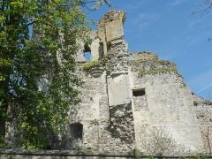 Restes du château -  Tour neuve et mur sud du logis seigneurial.