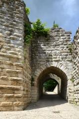 Ruines de l'ancien château et la butte sur laquelle elles sont situées - Français:   Porte Saint-Jean du chateau de Chateau Thierry, Aisne, France