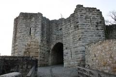Ruines de l'ancien château et la butte sur laquelle elles sont situées - Français:   La porte Saint-Jean à Château-Thierry.