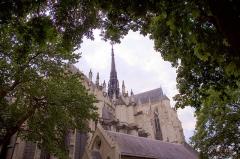 Cathédrale Notre-Dame - Cathédrale Notre-Dame