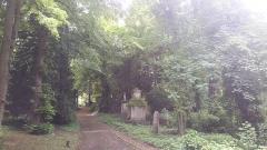 Cimetière de la Madeleine - Français:   Allée bordée de tombes