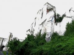 Ruines du château -  Picquigny (Somme, France) -   Château.  Porte de la Barbacane et murs en ruines surplombant la Rue du Rossignol.    .