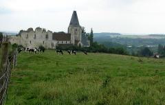 Ruines du château -  Picquigny (Somme, France) -   Le château, la collégiale et la vallée, vus depuis le Sud.   .