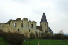 Ruines du château -  Les ruines de Chateau Fort et la collegiale