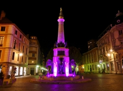Fontaine des Eléphants - English: Sight of the fontaine des éléphants fountain, coloured in pink within the framwork of the 2017 'Pink October National Breast Cancer Awareness Month', in Chambéry, Savoie, France.