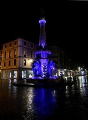 Fontaine des Eléphants - English: Sight, in a rainy winter evening, of the fontaine des éléphants fountain of Chambéry, Savoie, France.