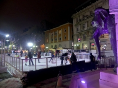 Fontaine des Eléphants - English: Sight, by night, of the temporary ice rink installed next to the fontaine des Éléphants fountain during Christmas 2018, in Chambéry, Savoie, France.
