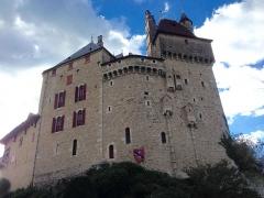Château de Menthon - Château de Menthon St Bernard et son emblème