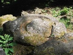 Site du Mont-Saint-Michel - Deutsch: Alter Opferstein unterhalb der Stampflöcher, in der Nähe des Mont Saint Michel.