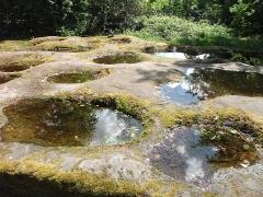 Site du Mont-Saint-Michel - Deutsch: Diese Löcher sollen früher mal als Getreidemahlbecken gedient haben, und befinden sich in der Nähe des Mont Saint Michel..