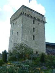 Château fort - Lourdes (Hautes-Pyrénées, Midi-Pyrénées, France): château, donjon (XIVème siècle).