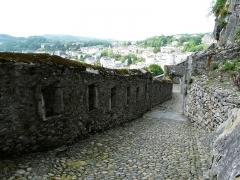 Château fort - Détail du château fort de Lourdes (Hautes-Pyrénées, France).