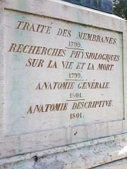 Statue de Bichat - Nederlands: Standbeeld (voet links) van Xavier Bichat in Bourg-en-Bresse