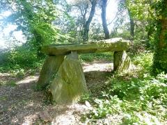 Domaine de Kernévez - Français:   Saint-Pol-de-Léon: dolmen dans le parc du château de Kernévez.