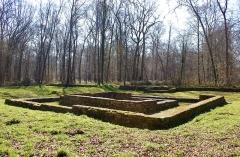 Temple gallo-romain de la forêt d'Halatte - Français:   Vue du Temple Gallo-romain de la Forêt d\'Halatte
