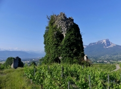 Site archéologique de Chignin - English: Sight, in the early morning, of three medieval towers on the heights of the vineyard commune of Chignin, with visible mont Granier mountain on the right, near Chambéry, Savoie, France.