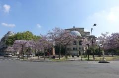 Église Saint-François-Xavier -  Trees in bloom @ Eglise Saint-François-Xavier @ Paris