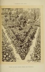 Roseraie du conseil général du Val-de-Marne, ancienne roseraie Gravereaux - Français:   Parterre de rosiers rampants (Madame Jules Gravereaux).