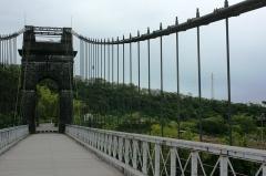 Pont suspendu de la rivière de l'Est -  Les suspentes du pont suspendu de la rivière de l'Est, à la Réunion