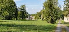 Eglise abbatiale de Blanchefosse (restes) - Deutsch:   Kloster Bonnefontaine (Abbaye de Bonnefontaine) Blanchefosse-et-Bay