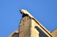 Eglise Saint-Siffrein, ou ancienne cathédrale - Français:   Église Saint-Siffrein de Carpentras, ou ancienne cathédrale église (classement)